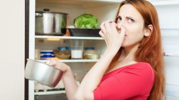 Cómo quitar los malos olores del refrigerador
